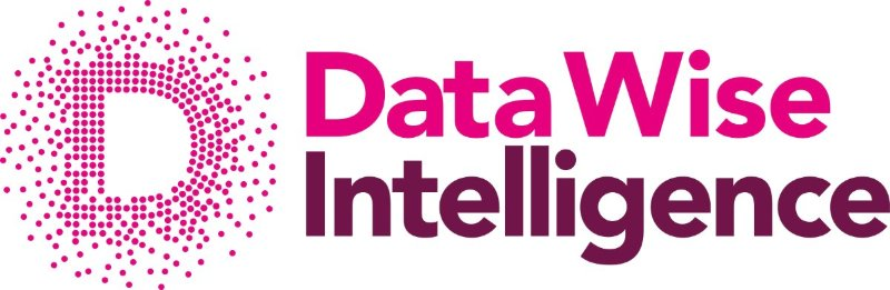 DataWise Intelligence Limited